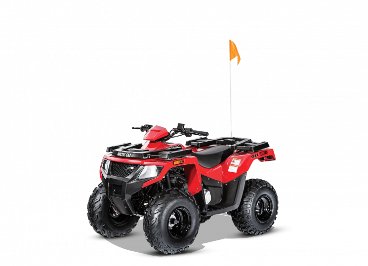 Arctic Cat Alterra 90 2017