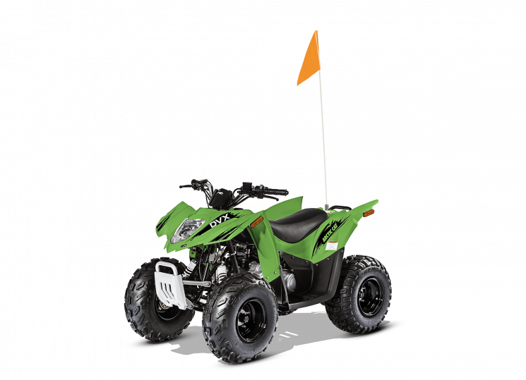 2017 Arctic Cat DVX 90
